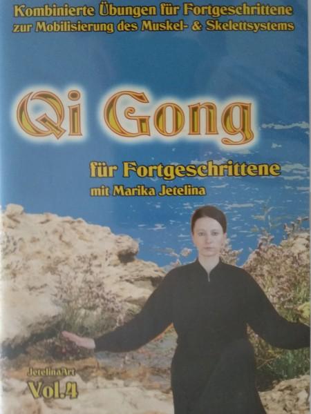 Qi Gong für Fortgeschrittene